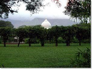 Da Love-Ananda Mahal